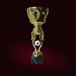 Футбол къп / Football cup